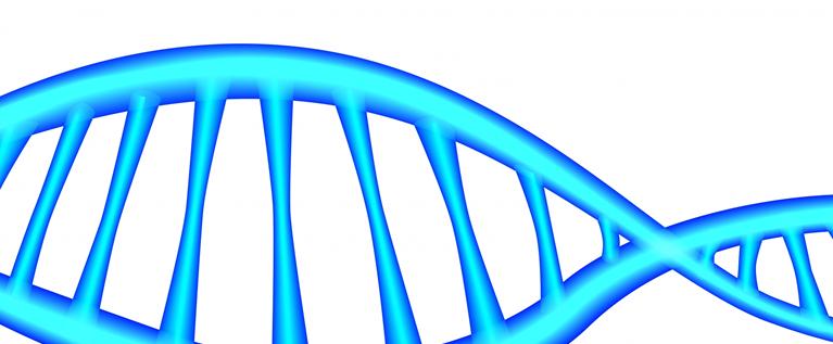 遺伝子解析サービスを見る